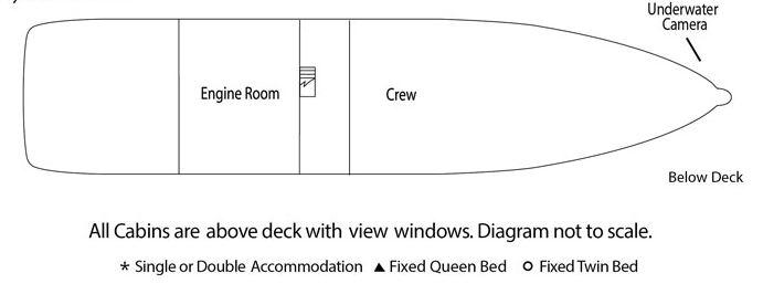 Wilderness Explorer - Below Deck